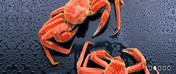 kaluri-crab